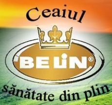 Belin - Various fruit tea bag